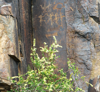 Petroglyphs of the Tamgaly. Epochs of the Bronze and Iron Ages. Mountains of Anrakay. Kazakhstan.